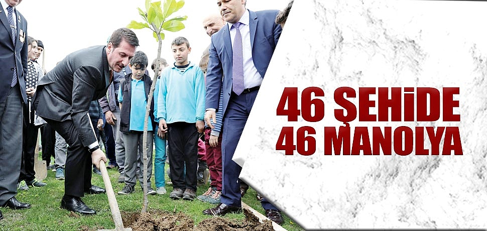 46 ŞEHİDE46 MANOLYA