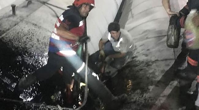 Sıcak asfaltın içine düştü, kurtarılamadı