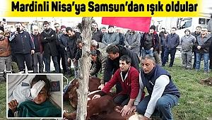 Mardinli Nisa'ya Samsun'dan ışık oldular