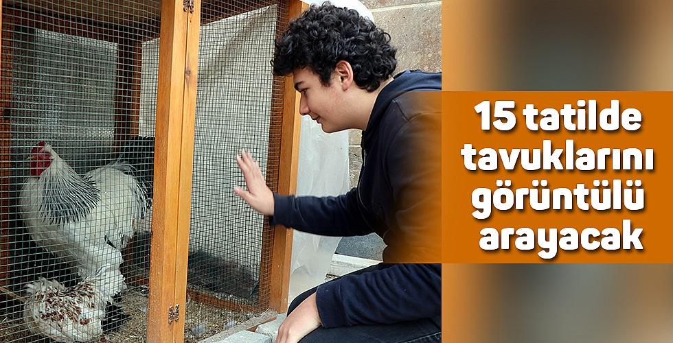 15 tatilde tavuklarını görüntülü arayacak