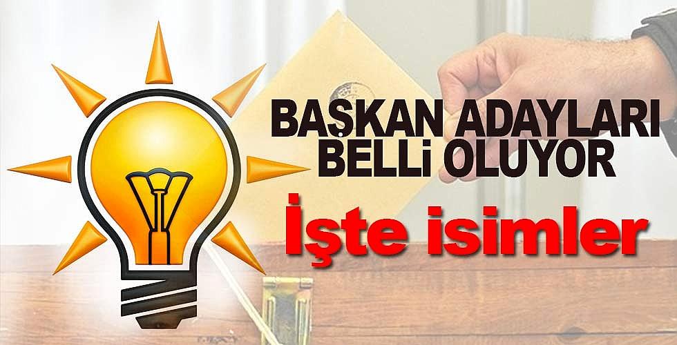 AK Parti Samsun adayları belli oldu