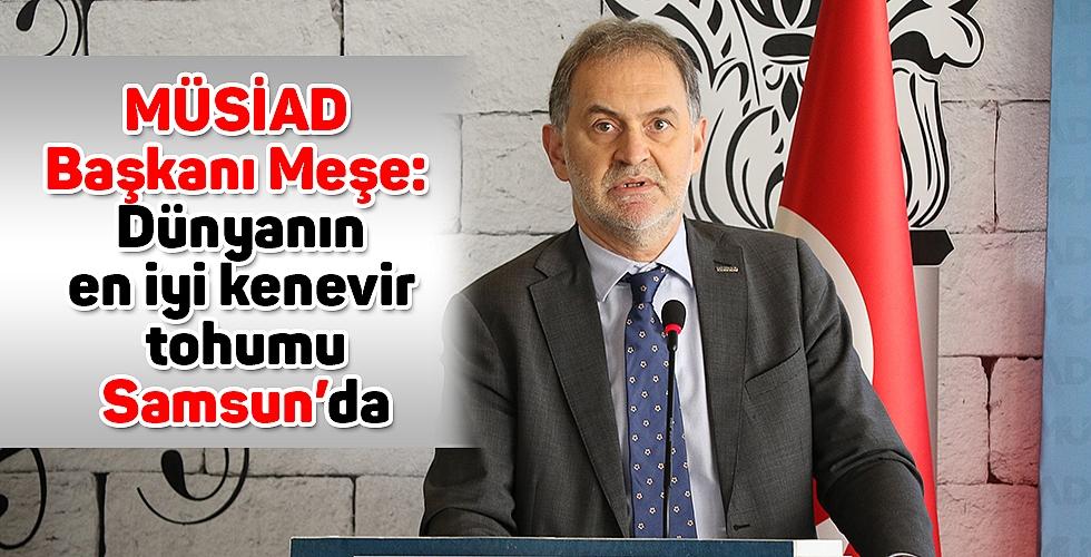 MÜSİAD Başkanı Meşe: Dünyanın en iyi kenevir tohumu Samsun'da