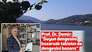 Prof. Dr. Demir: