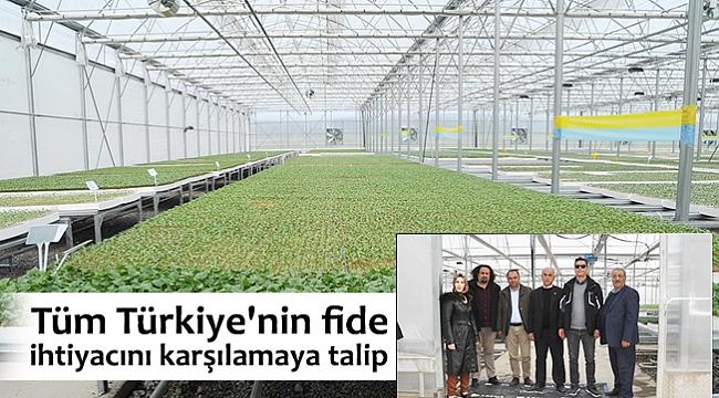 Tüm Türkiye'nin fide ihtiyacını karşılamaya talip