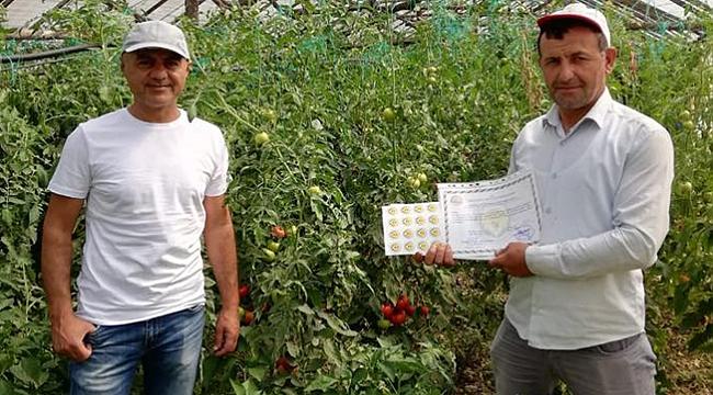 Örnek üreticilere sertifika