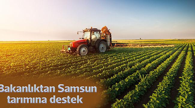 Bakanlıktan Samsun tarımına destek