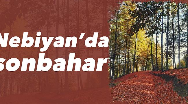 Nebiyan'da sonbahar