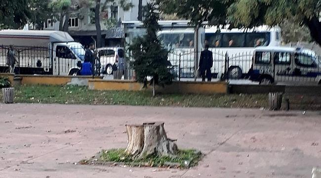 Kaymakamlığa ağaç tepkisi