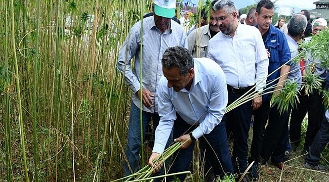 Çiftçiye 303 milyon TL destek