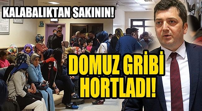 DOMUZ GRİBİ HORTLADI!