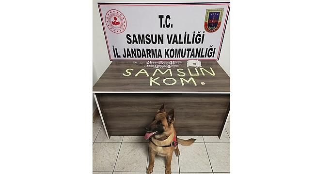 Samsun'da zehir operasyonu: 2 tutuklama