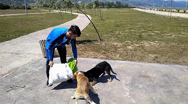 Gençler vakitlerini sokak hayvanlarına ayırıyor