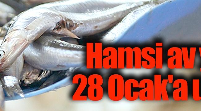 Hamsi av yasağı28 Ocak'a uzatıldı