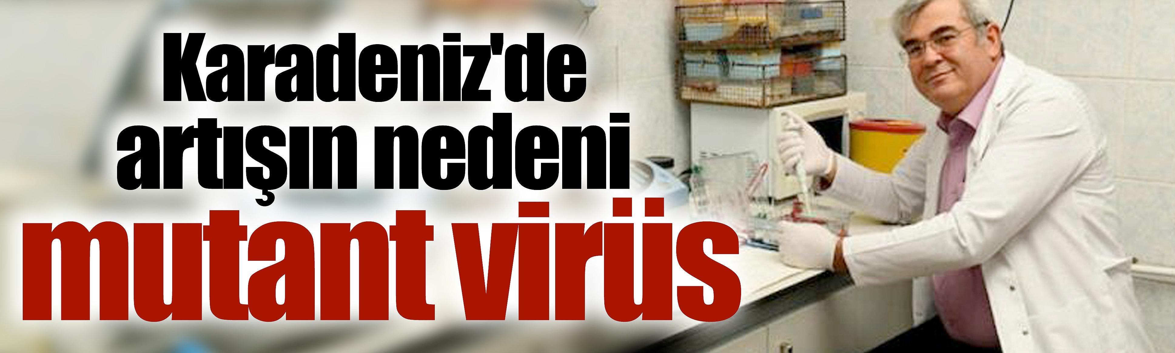 Karadeniz'de artışınınnedeni mutant virüs