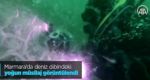 Marmara'da deniz dibindeki yoğun müsilaj görüntülendi